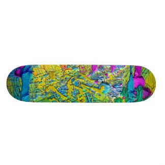 color skateboard deck
