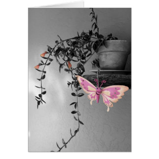 Color Splash Butterfly Still Life Photograph Card