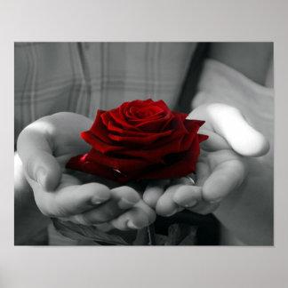 Color Splash Red Rose Poster