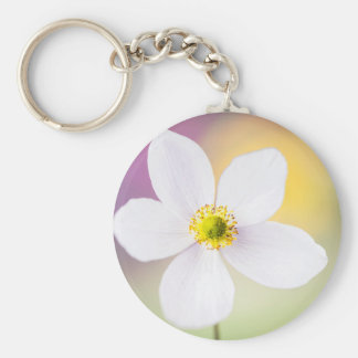 Color Wheel Keychain