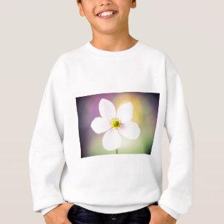 Color Wheel Sweatshirt