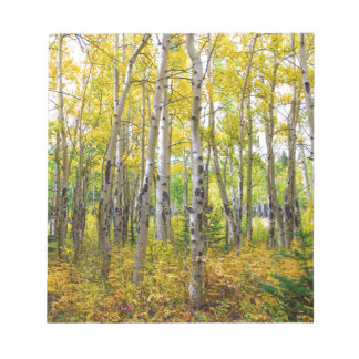 Colorado Backcountry Forest Notepad