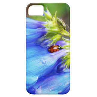 Colorado Beauty Case For The iPhone 5