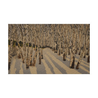 Colorado Birches in the Snow Canvas Print