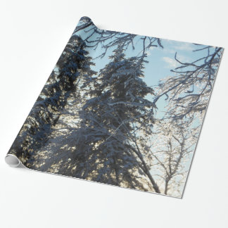 Colorado Blue Spruce Icy Pine Wrapping Paper