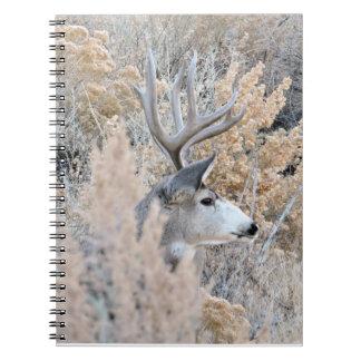 Colorado Buck Notebook