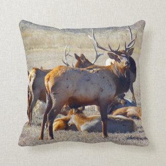 Colorado Elk Throw Pillow