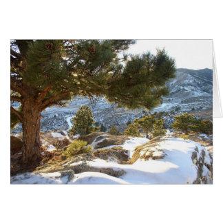 Colorado Greetings Card