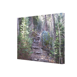 Colorado hiking trail, sunlit stepped path canvas print