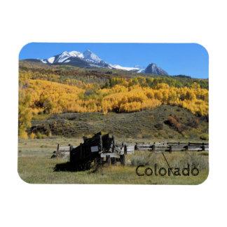 Colorado McClure Pass Aspens Magnet