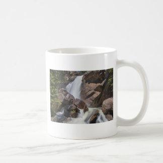 Colorado_Ouzel_Falls Coffee Mug