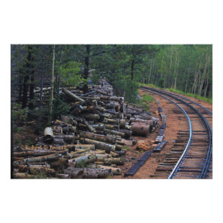 Colorado Pikes Peak Wood Pile Photo Print