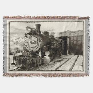 Colorado Railroad Museum Engine 491 Throw
