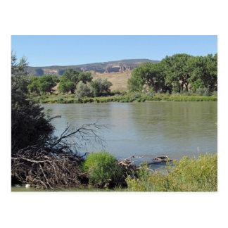 Colorado River at Little Salt Wash Creek Postcard