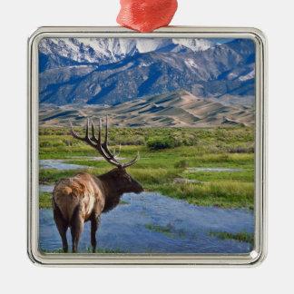 Colorado Rocky Mountains Elk Metal Ornament