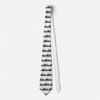 Colorado Rocky Mountains Tie