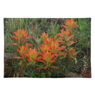 Colorado Scarlet Paintbrush Place Mats