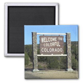 Colorado Travel Souvenir Fridge Magnet