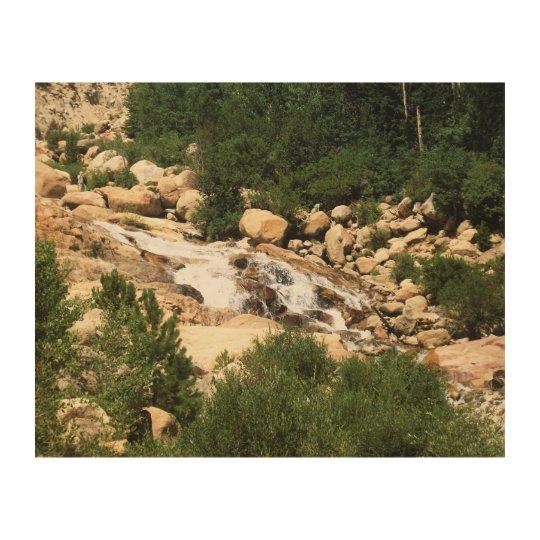 Colorado waters wood print