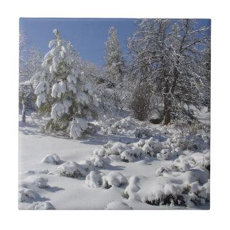 Colorado Winter Tile