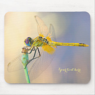 Colored Dragonfly Mouse Pad