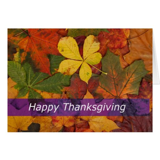 Colored Fall Leaves  Happy Thanksgiving Card