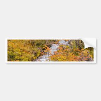 Colored Forest Landscape Scene, Patagonia Bumper Sticker