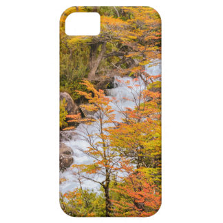 Colored Forest Landscape Scene, Patagonia Case For The iPhone 5