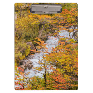 Colored Forest Landscape Scene, Patagonia Clipboard