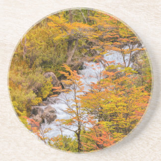 Colored Forest Landscape Scene, Patagonia Coaster