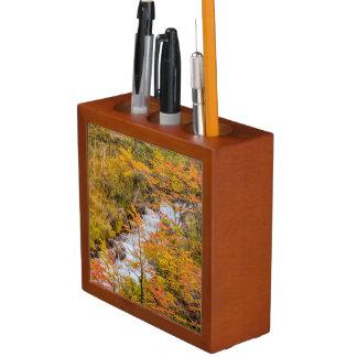 Colored Forest Landscape Scene, Patagonia Desk Organizer