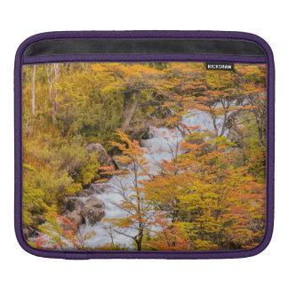 Colored Forest Landscape Scene, Patagonia iPad Sleeve