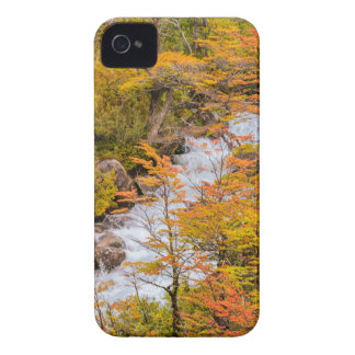 Colored Forest Landscape Scene, Patagonia iPhone 4 Case