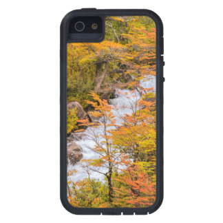 Colored Forest Landscape Scene, Patagonia iPhone 5 Case