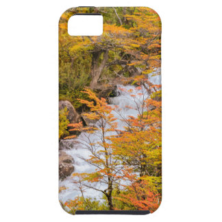 Colored Forest Landscape Scene, Patagonia iPhone 5 Covers