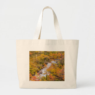 Colored Forest Landscape Scene, Patagonia Large Tote Bag