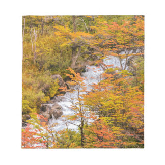 Colored Forest Landscape Scene, Patagonia Notepad
