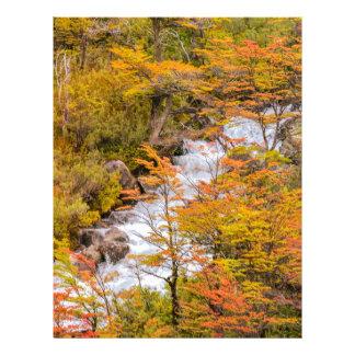 Colored Forest Landscape Scene, Patagonia Personalized Letterhead