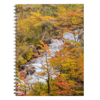 Colored Forest Landscape Scene, Patagonia Spiral Note Books