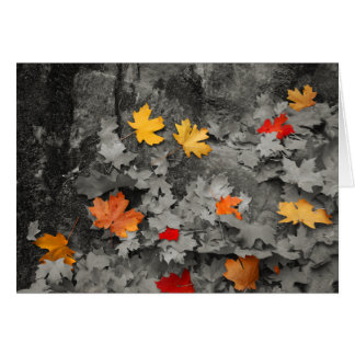 Colored Leaves in Black and White Card