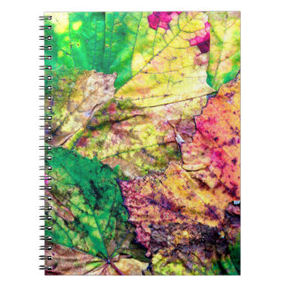 Colored Leaves Notebook