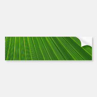 Colorful abstract green palm leaf car bumper sticker