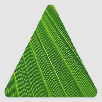Colorful abstract green palm leaf triangle sticker