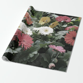 Colorful Aster Flowers with Muted Colors Wrapping Paper