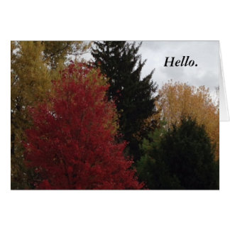 Colorful Autumn Fall Trees Hello Greeting Cards