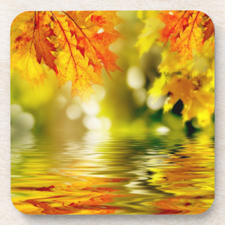 Colorful autumn leaves reflecting in the water 2 coaster