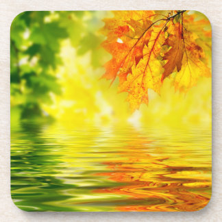 Colorful autumn leaves reflecting in the water beverage coasters