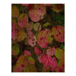 Colorful Autumn Letterhead Template