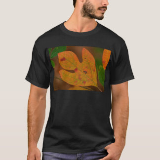 Colorful Autumn Sassafras albidum Leaves T-Shirt