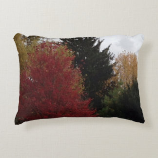 Colorful Autumn Trees Photo Accent Pillows